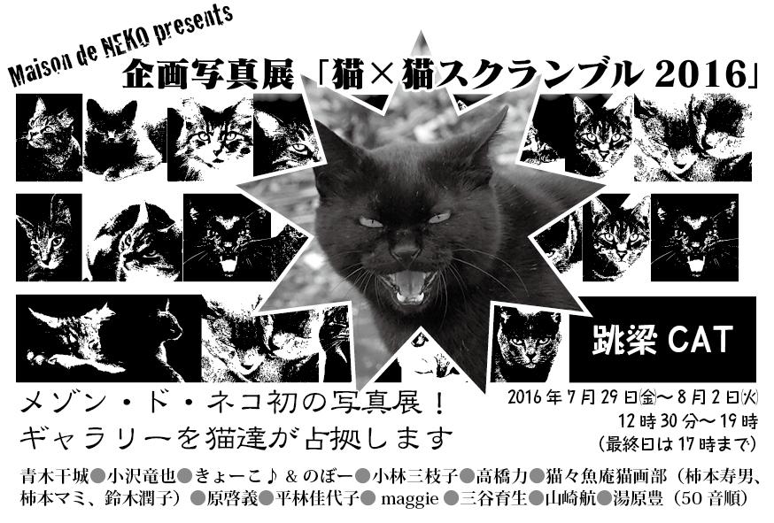 http://tailchaser.halfmoon.jp/2016/07/21/DM.jpg